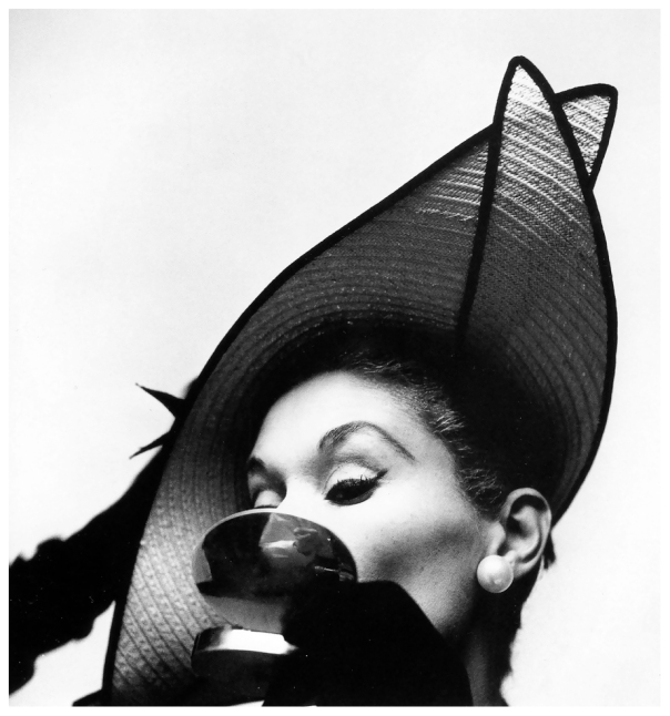 lisa-fonssagrives-photo-by-irving-penn-new-york-1949