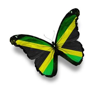 Jamaican flag butterfly, Jamaica, Butterfly, #Jamaica, #Jamaicanindependence #JA